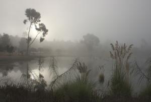 Dawn at Lake Murray
